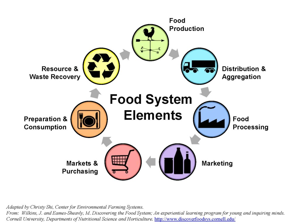 Food System Supply Chain Diagram