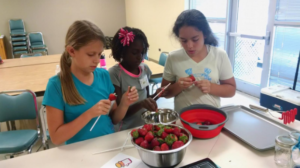 Participants clean strawberries to use in a dish.